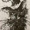 catbirdstudio